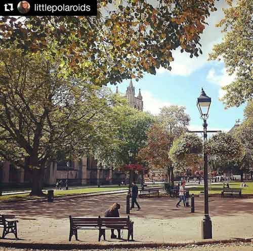 College Green in the morning