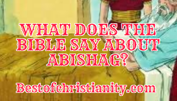 What Does The Bible Say About Abishag