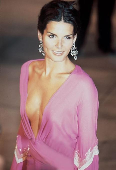 angie harmon awesome pictures