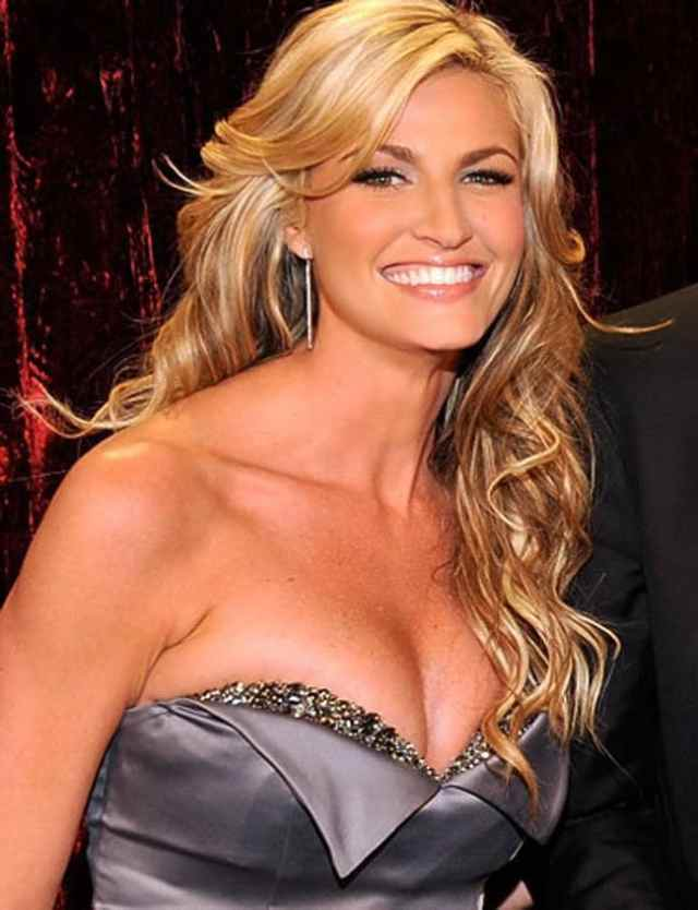 erin andrews cleavage pics