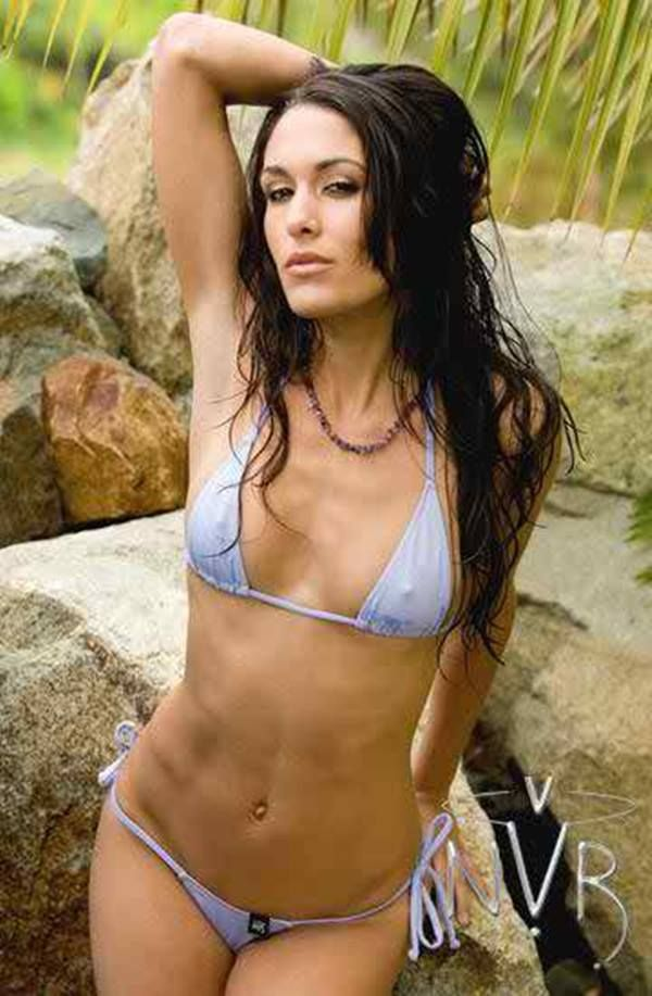 Brie Bella Sexy Pictures