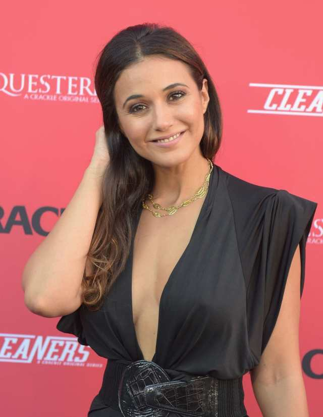 Emmanuelle Chriqui cleavages awesome pic (2)