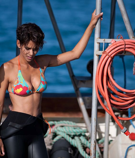 Halle Berry Sexy Boobs Pictures on Lingerie