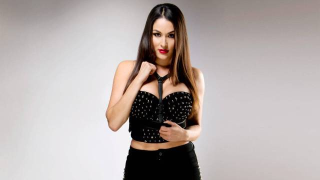Nikki Bella sexy cleavages pic