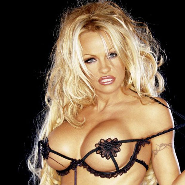 Pamela Anderson hot busty pic
