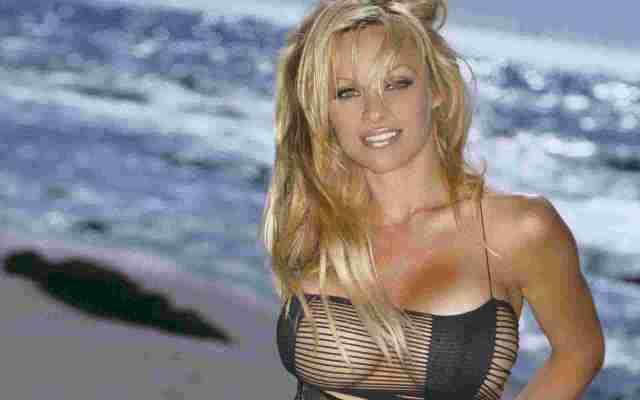 Pamela Anderson sexy pic (3)