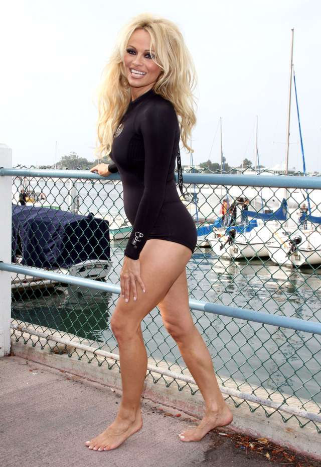 pamela anderson sexy picture