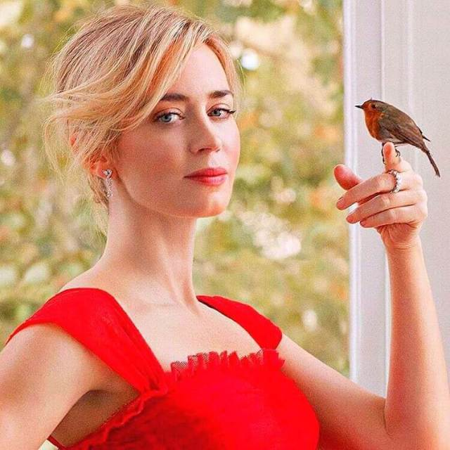 emily blunt sexy red dress pic