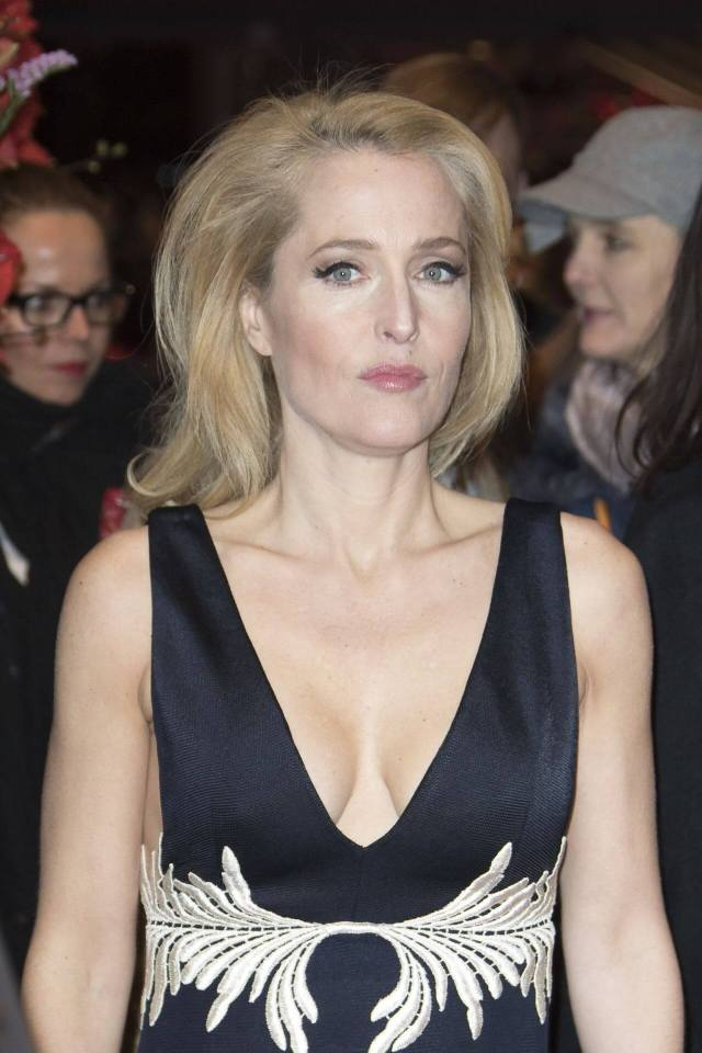 Gillian Anderson hot busty pictures (4)
