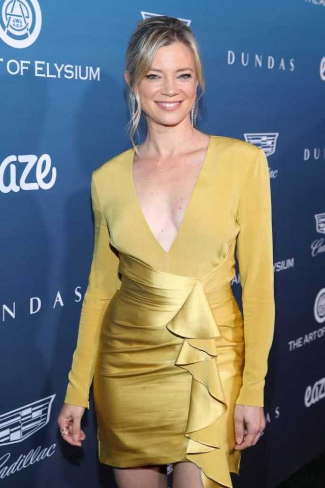 Amy Smart hot look pictures (2)