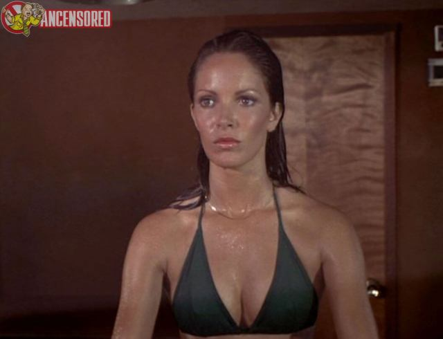 Jaclyn-Smith-sexy-women-picture