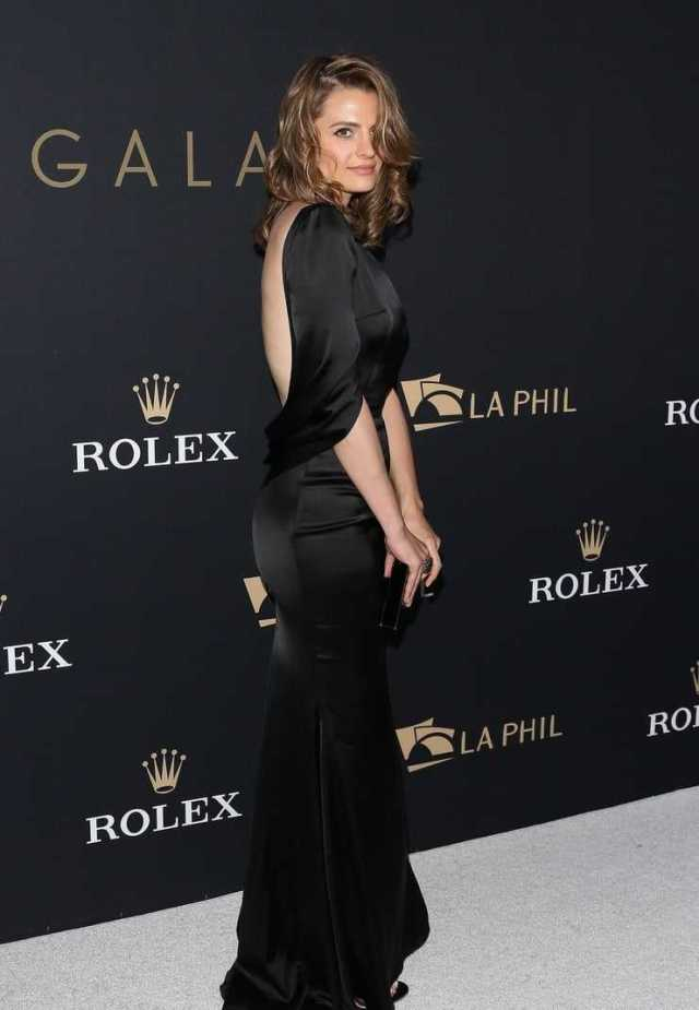 Stana Katic hot ass pictures (2)