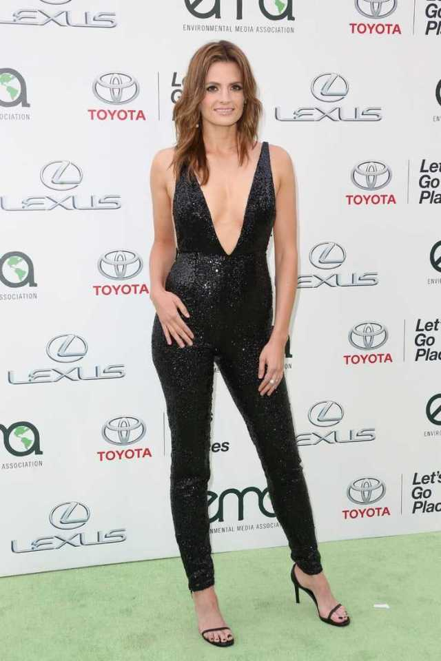 Stana Katic hot busty pictures