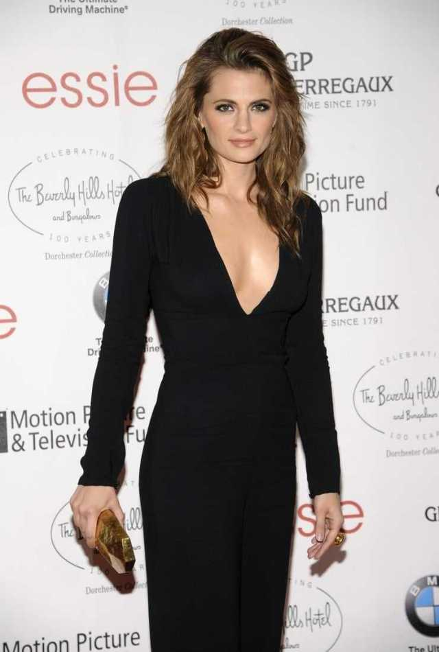 Stana Katic sexy side boobs pictures