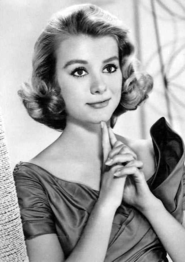 65 Inger Stevens Sexy Pictures Which Will Make You Succumb