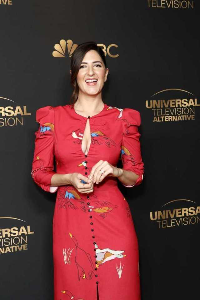 D'Arcy Carden cleavage photo