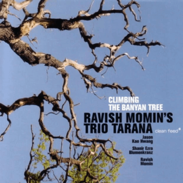 Ravish Momin's Trio Tarana - Climbing The Banyan Tree