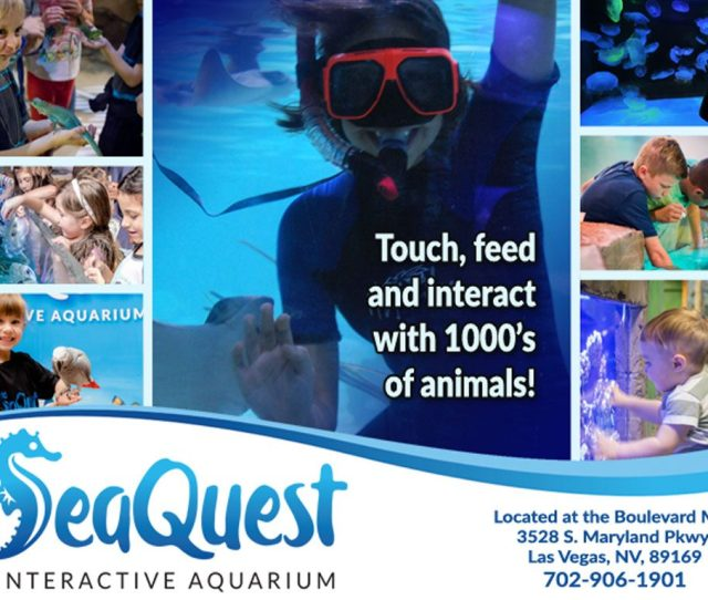 Families And Children Of All Ages Youll Be Able To Get Wet With The Stingrays Feed The Toucans Encounter The Caimans Marvel At The Sharks