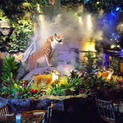 Rainforest Cafe Menlo Park Hours