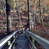 Cheesequake State Park, Winter Hiking
