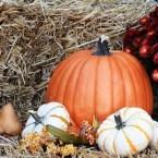 October Fairs & Festivals