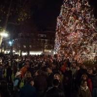 tree lighting, holiday tree lighting