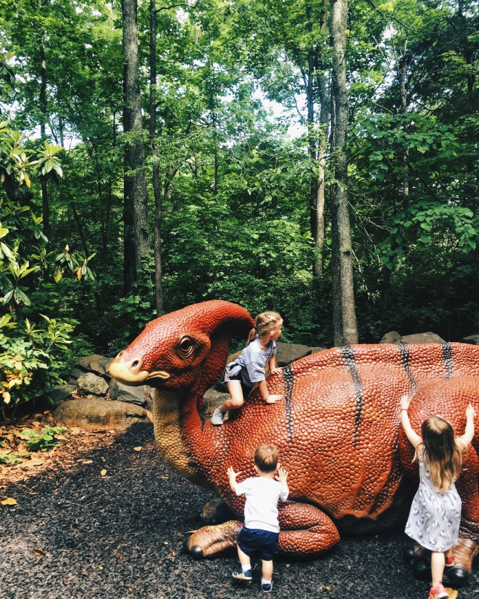 Kid friendly things to do in Durham nc museum of life and science
