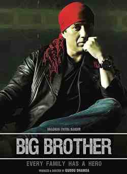 Big Brother movie poster