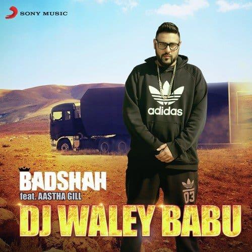 DJ Waley Babu album artwork