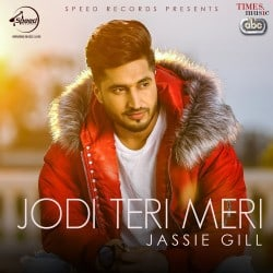 Jodi Teri Meri album artwork