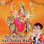 Main Tere Bin Rah Nahi Sakda artwork