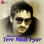 Tere Nal Pyar Paa Ke album artwork