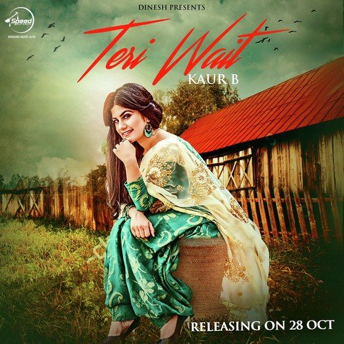 Teri Wait album artwork