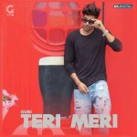 Teri Meri album artwork
