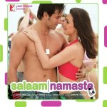 Salaam Namaste artwork