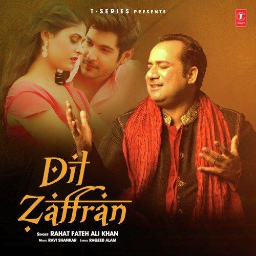 Dil Zaffran album artwork