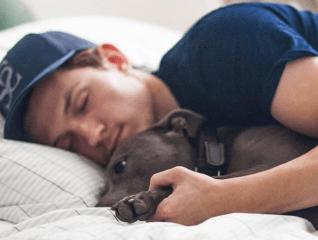 5 celebs who love pets