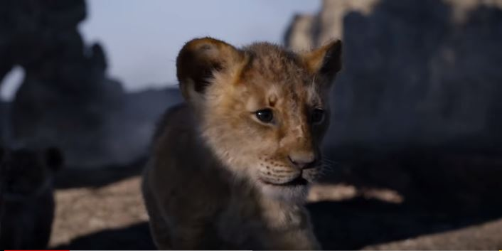 Now You Can Watch The Lion King 2019 Full Movie Online Boty