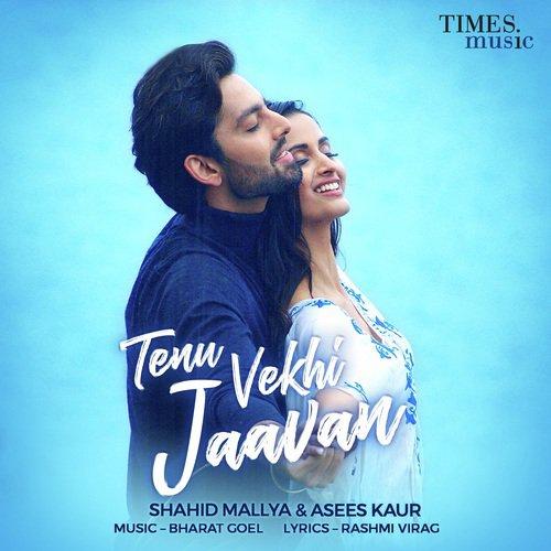 Tenu Vekhi Jaavan album artwork