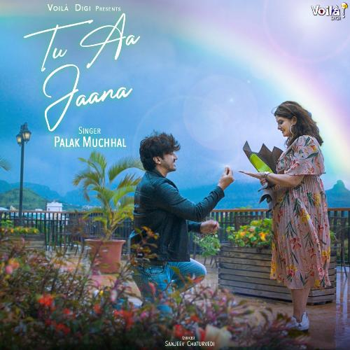 Tu Aa Jaana album artwork