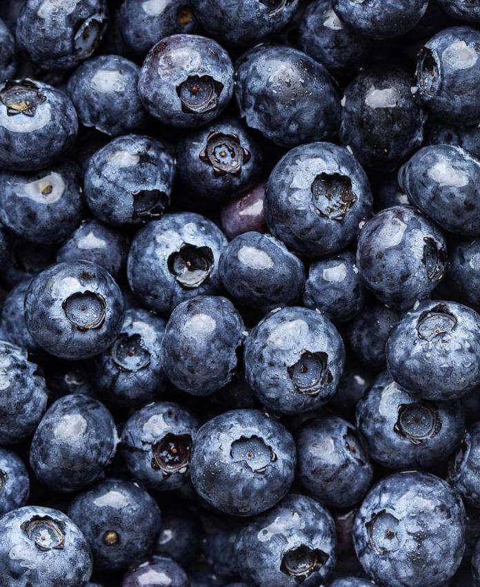 Vegan Jagodzianki (Polish Blueberry Buns)