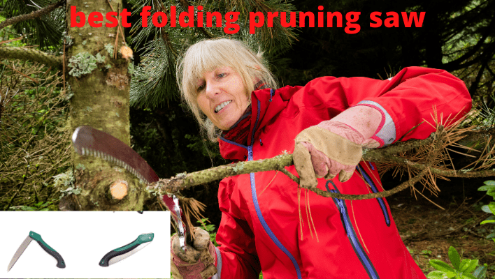 best folding pruning saw