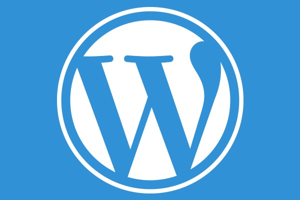 Can Hiring a WordPress Developer Do Wonders for Your Business
