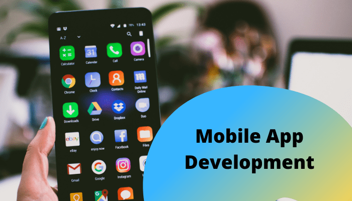 How Much Will Cost to Develop Business Mobile Application