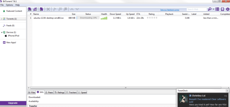 bittorrent torrent client