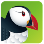 puffin web browser for swf
