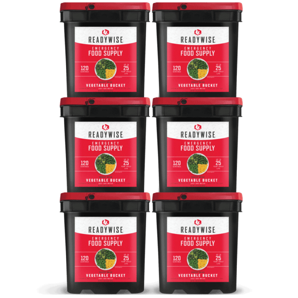 720 Servings of Freeze Dried Vegetables - 6 Buckets