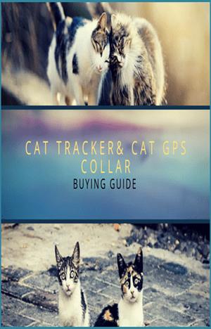 cat gps collar