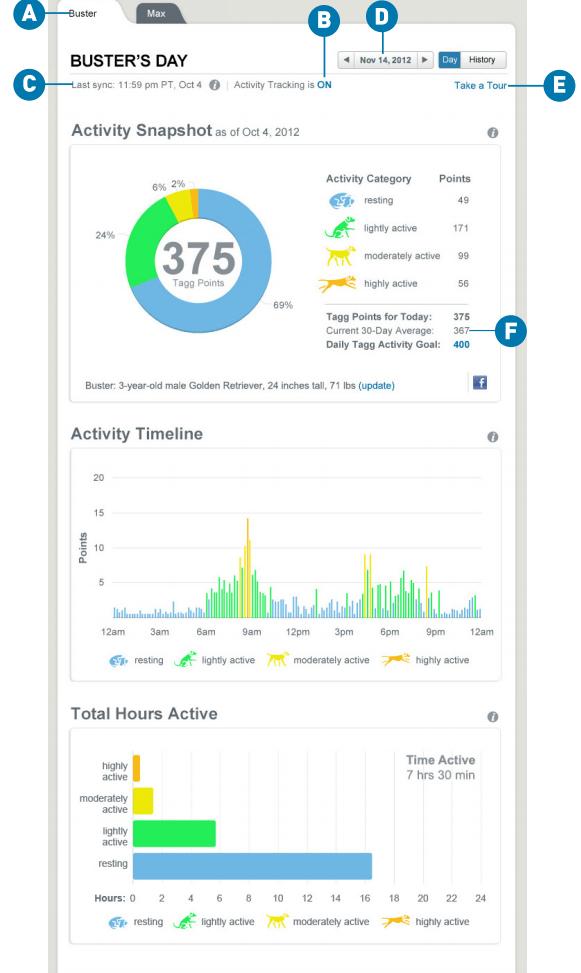 Tagg Activity Tracker