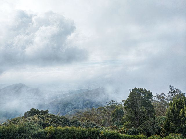 Places in Ooty to visit